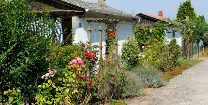 kleingartenanlagen - sinnvoll genutzte freizeit für tausende, Best garten ideen